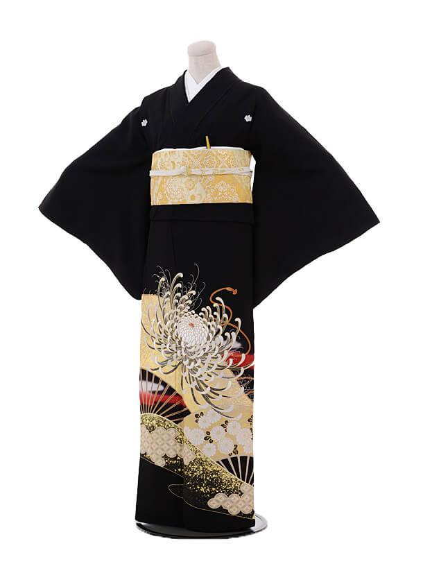 黒留袖4442金彩扇に乱菊