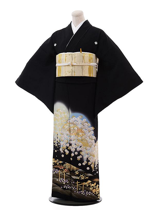 黒留袖5331夢二浪漫桜に扇面
