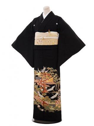 留袖 レンタル 6099 菊松に鶴