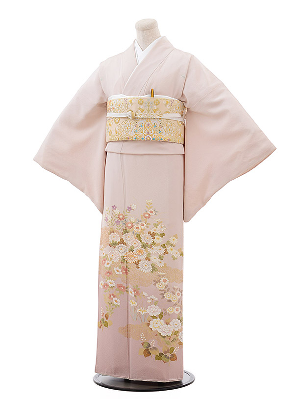 色留袖レンタル675薄ピンク地菊