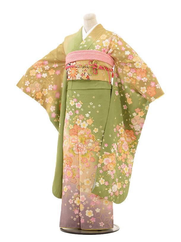 振袖E048 グリーン桜