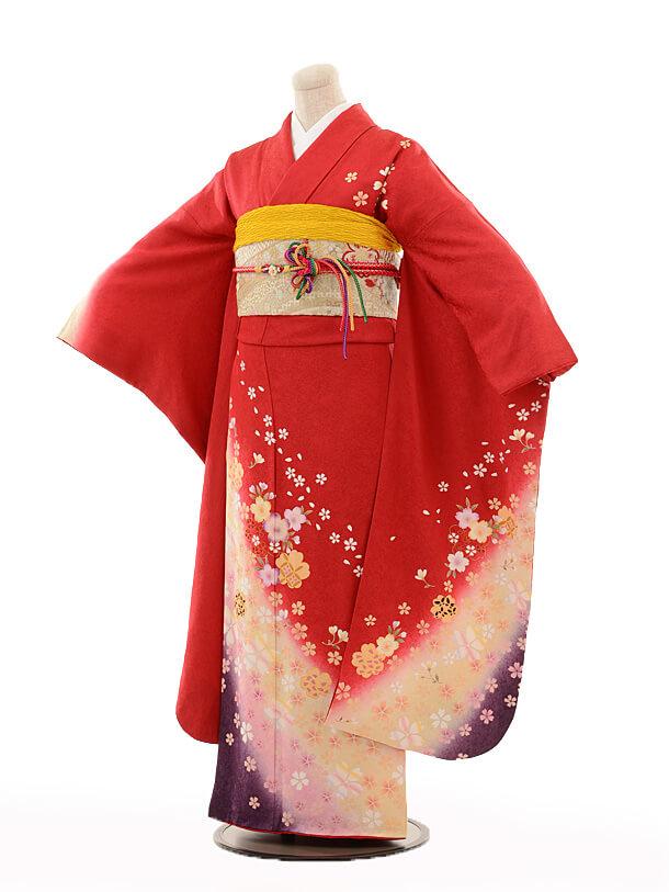 振袖E074 赤地桜吹雪