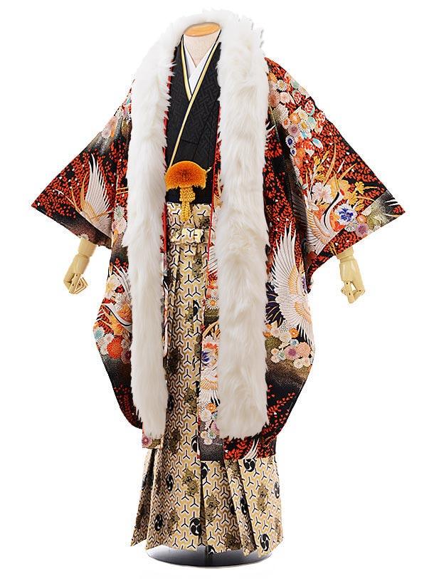 男性用袴men0058ゴールドシルバー 鶴×黒地 紗綾型 紋服(L)