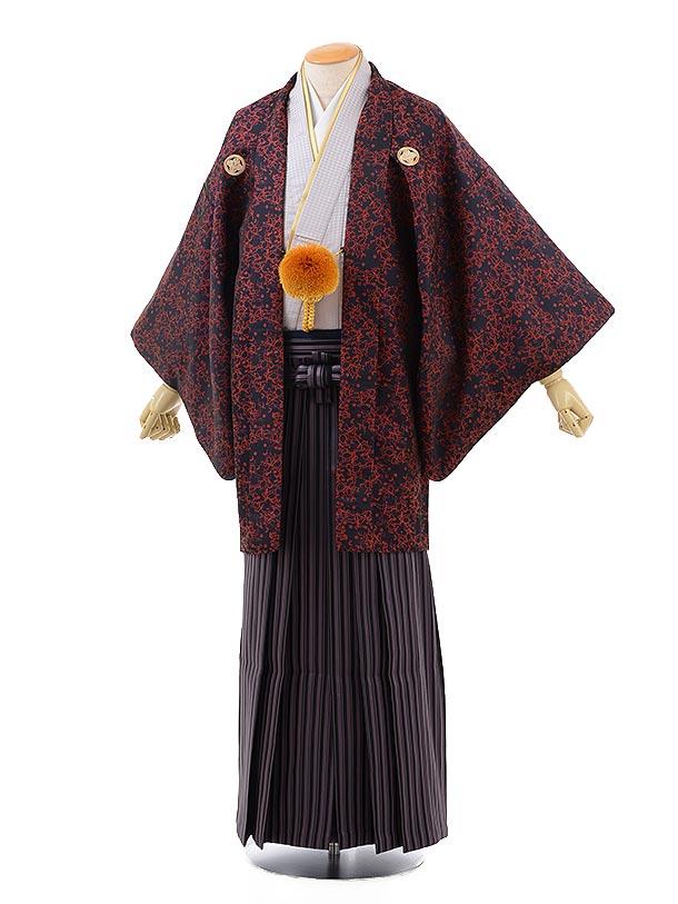 男性用袴men0121黒地赤変わり柄×パープルストライプ袴