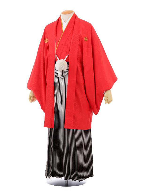 成人式卒業式袴レンタル(男)D023赤紋付×黒シルバーばかし袴