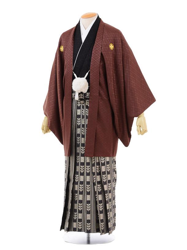成人式卒業式袴レンタル(男)D024ブラウン紋付×黒ゴールド袴