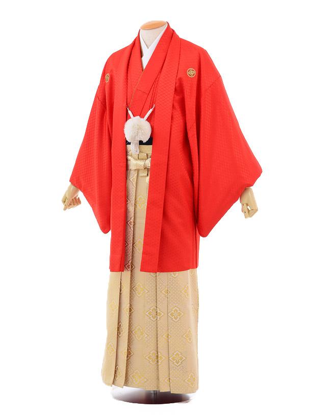 成人式卒業式袴レンタル(メンズ)D044赤紋付×ゴールド袴