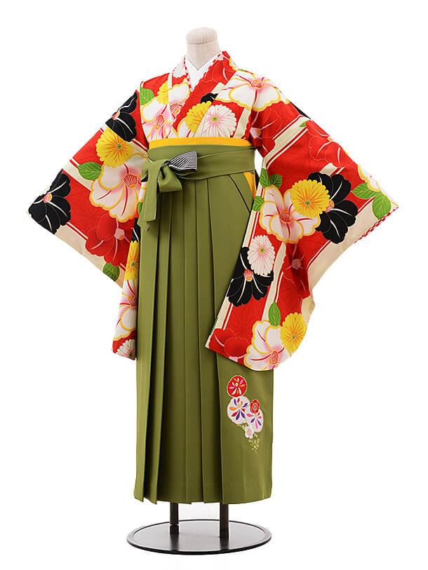 卒業袴レンタル h068 JAPAN STYLE×中村里砂 赤×グリーン