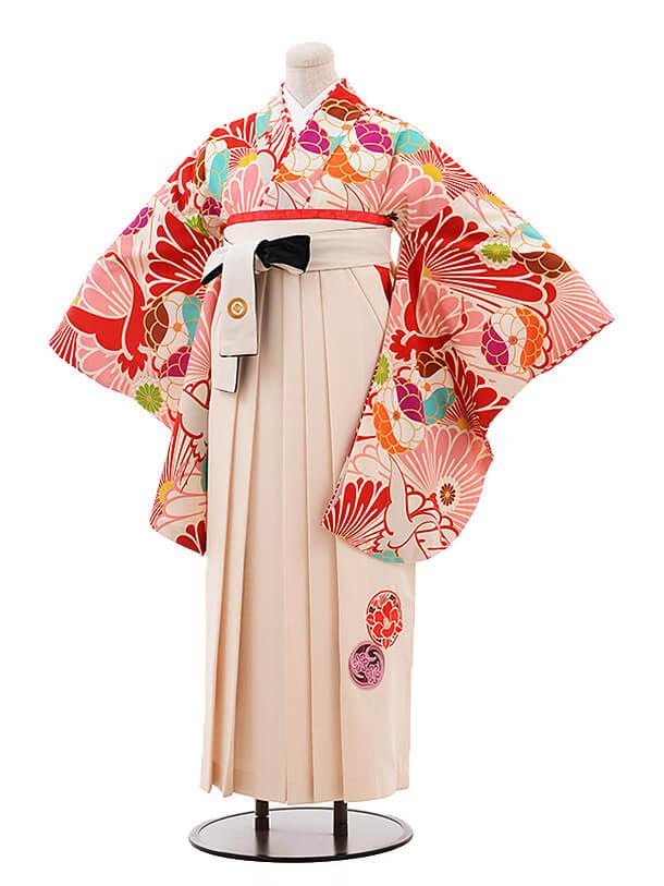 卒業袴レンタル h073 JAPAN STYLE×中村里砂 白×クリーム色