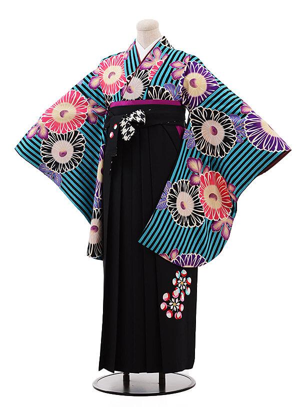卒業袴レンタル h079 紅一点×EMMA ブルー×黒
