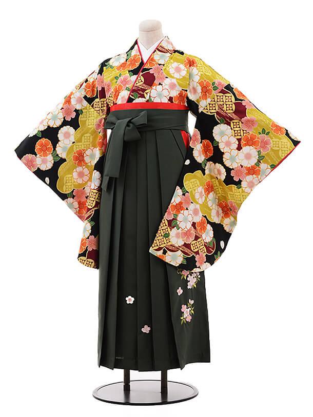 卒業袴レンタル h098 ひいな(着物のみ) 黒地 桜×グリーン