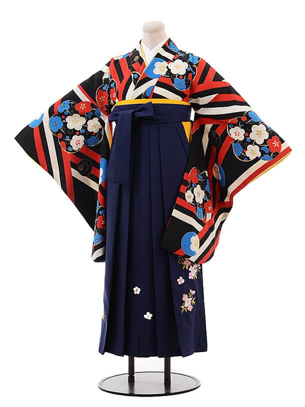 卒業袴レンタル h106 ROYAL PARTY(着物のみ) 黒地 梅×紺