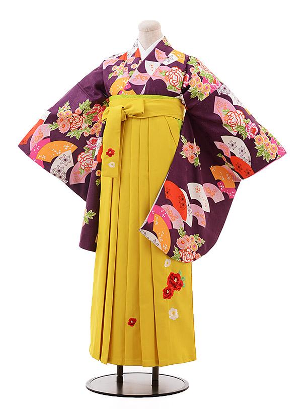 卒業袴レンタル h133 紫 扇花×イエロー袴
