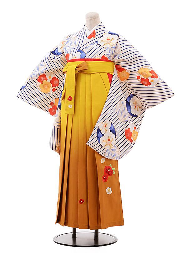 卒業袴レンタル h136 白 斜めストライプ 椿×からし袴