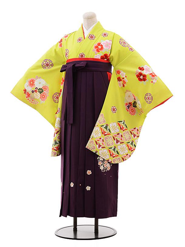 卒業袴レンタル h138 白石麻衣 黄緑×パープル袴