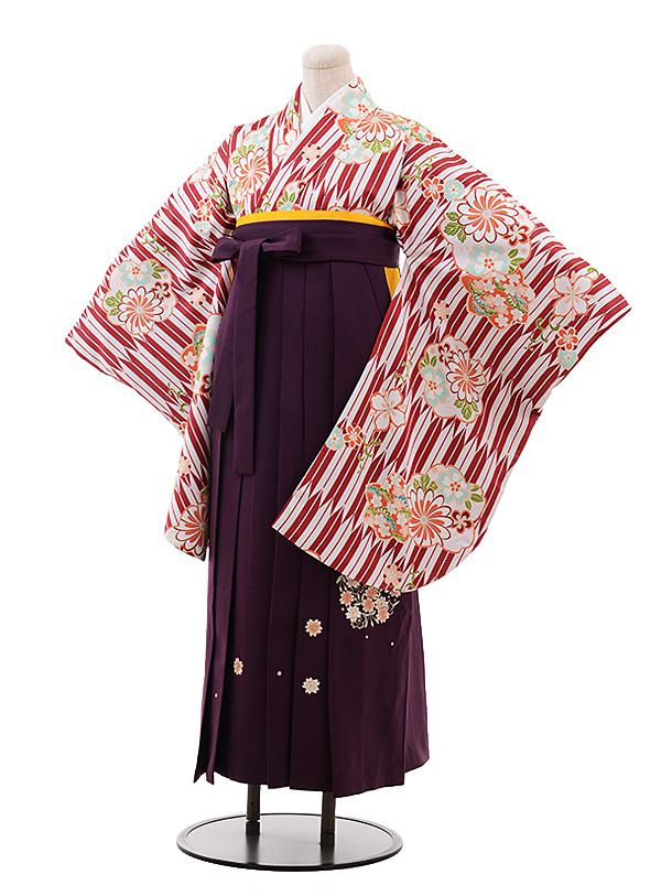 卒業袴レンタル h145 白地 矢柄 花×パープル袴