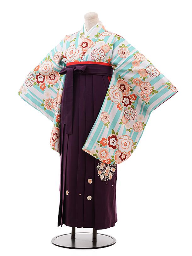 卒業袴レンタル h146 水色 ストライプ 花×パープル袴