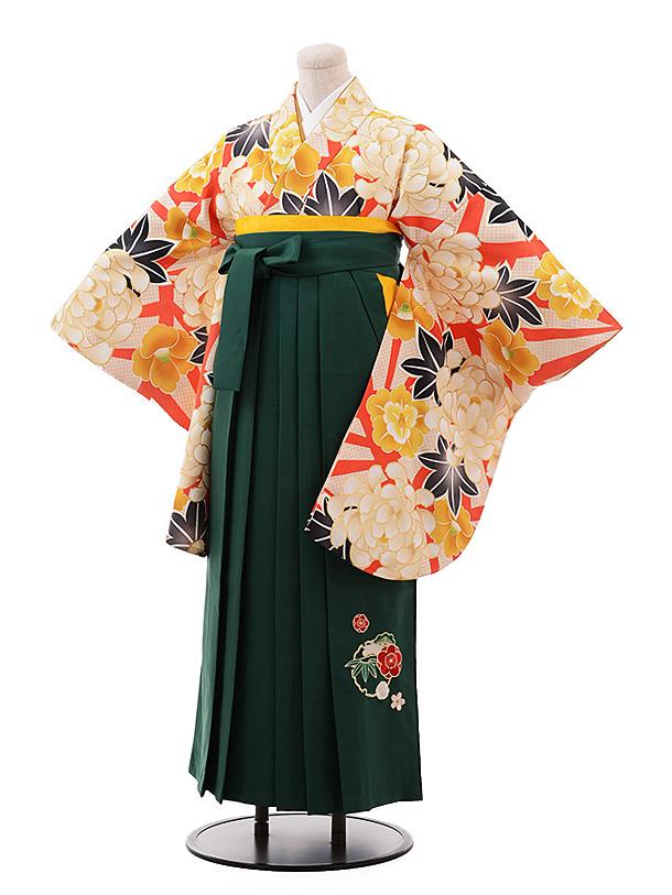卒業袴レンタル h150 オレンジ地 ぼたん×グリーン袴