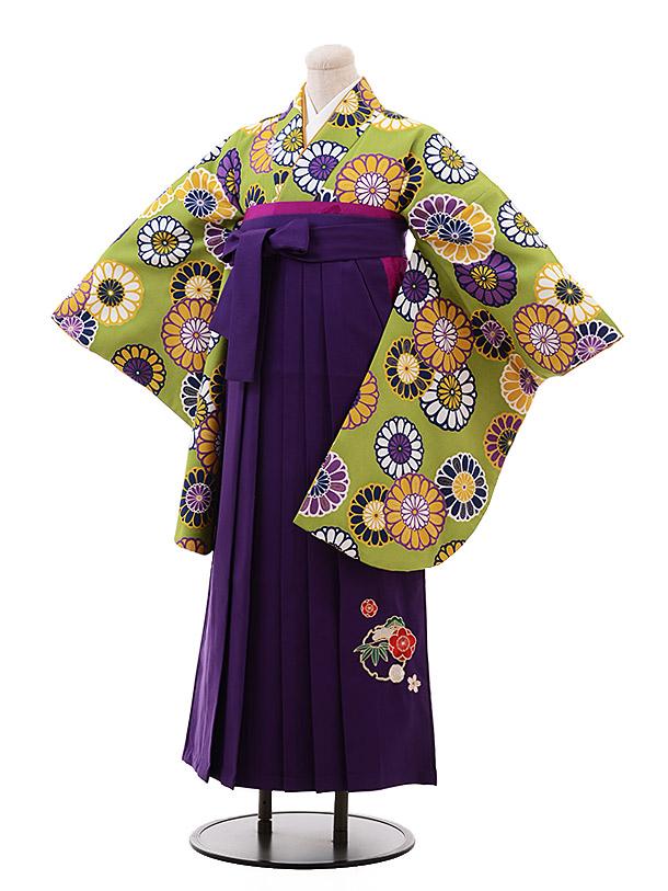 卒業袴レンタル h153 グリーン地 菊×パープル袴