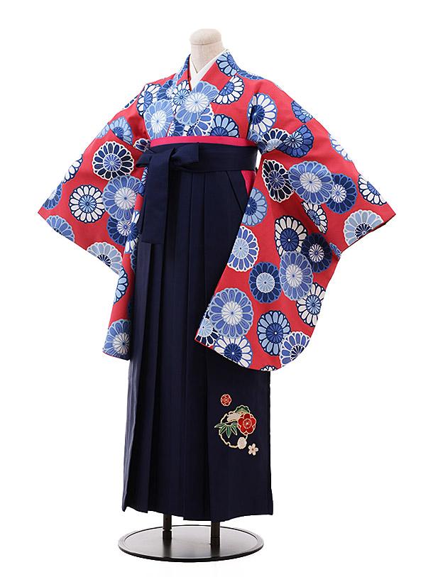 卒業袴レンタル h154 ローズ地 菊×紺袴