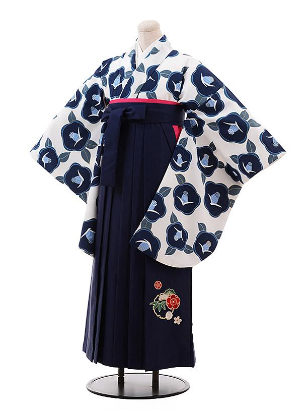 卒業袴レンタル h155 白地 紺 椿×紺袴