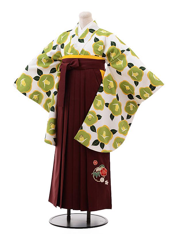 卒業袴レンタル h157 白地 グリーン 椿×エンジ袴