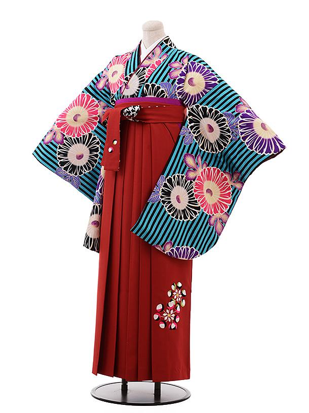 卒業袴レンタル h160 紅一点 ターコイズストライプ 花×エンジ袴