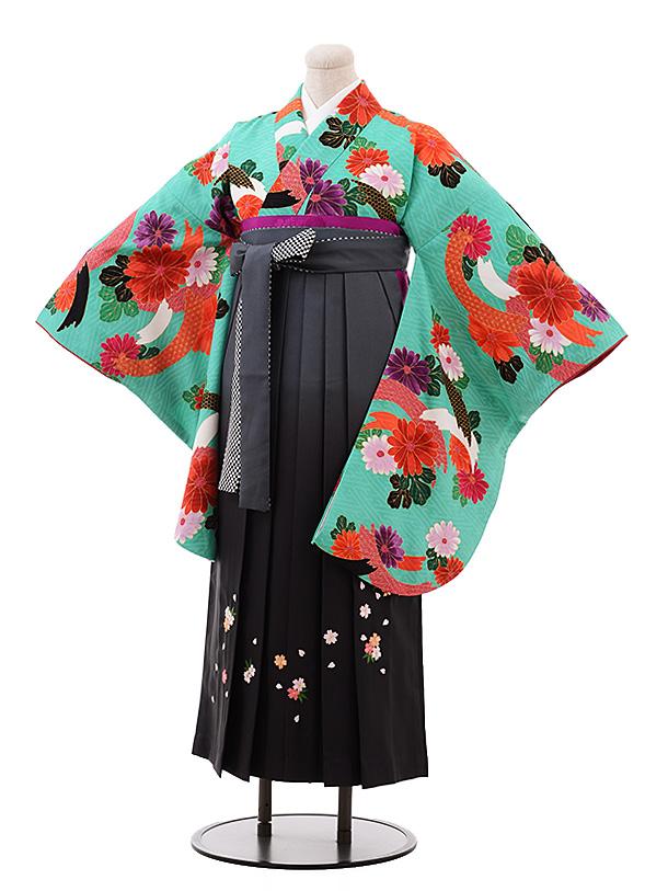 卒業袴レンタル h163 グリーン地 菊×グレーぼかし袴