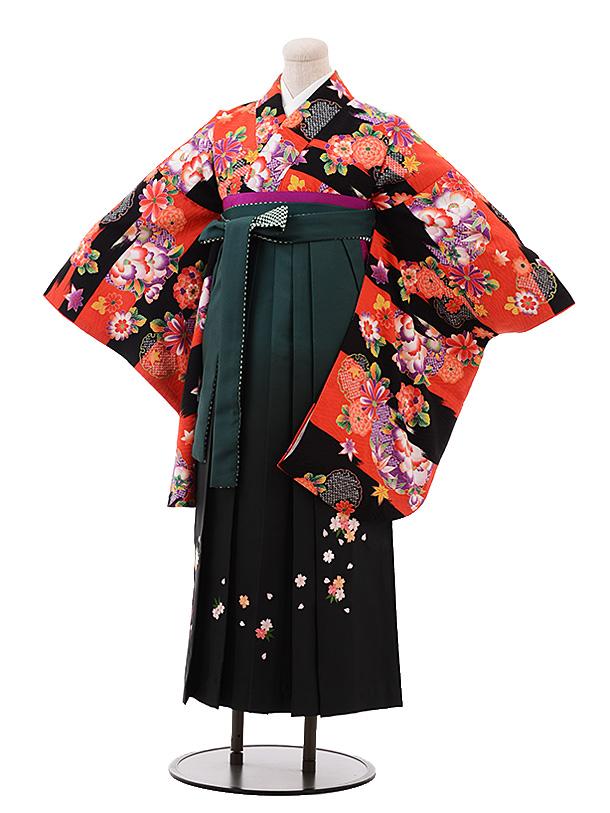 卒業袴レンタル h168 赤地 雪輪 花×グリーンぼかし袴