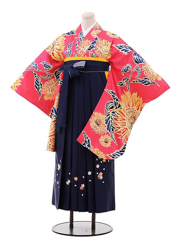 卒業袴レンタル h173 ピンク地 花×紺袴