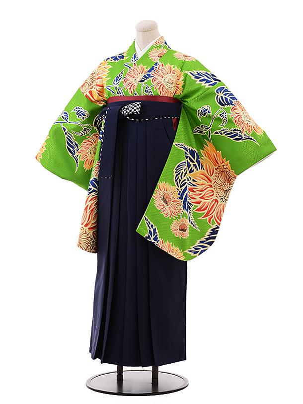 卒業袴レンタル h178 グリーン地 花×紺袴