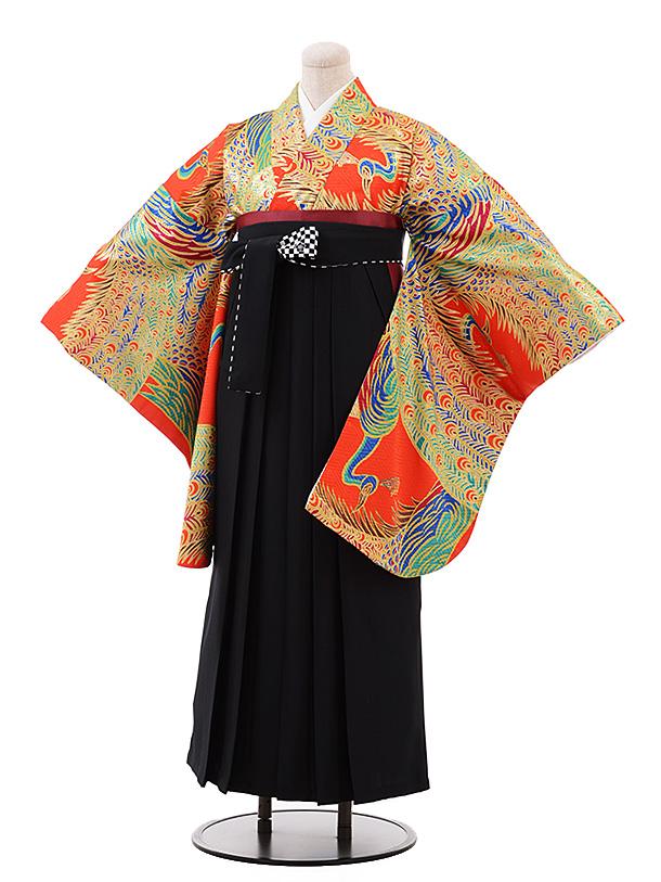 卒業袴レンタル h180 赤地 ゴールド 孔雀×黒袴