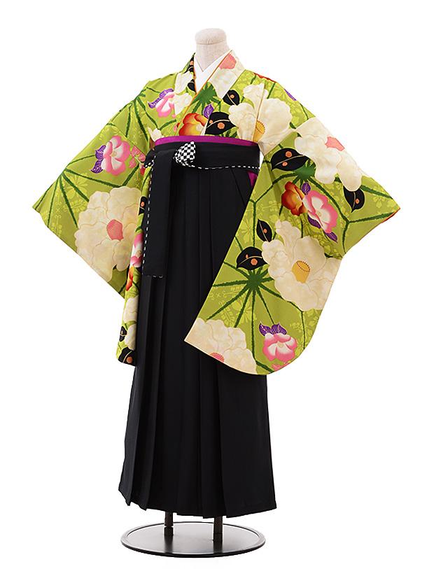 卒業袴レンタル h182 紅一点(着物のみ) グリーン椿×黒袴