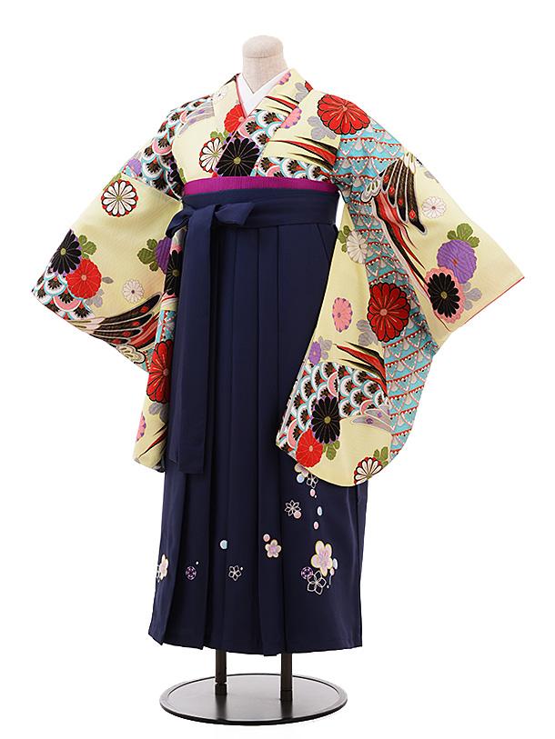 【ふくよかサイズ】卒業袴レンタル h198 クリーム地 菊 古典×紺袴
