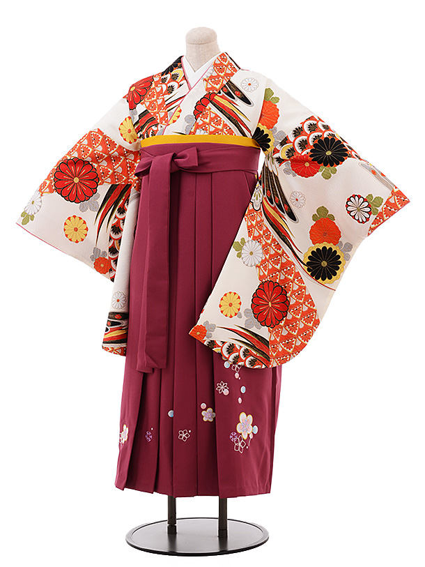 ふくよかサイズ】卒業袴レンタル h201 オフホワイト 菊 古典×エンジ袴