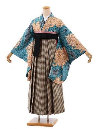 卒業式袴レンタルh444ラフィネモカ大菊ブルー×千鳥袴