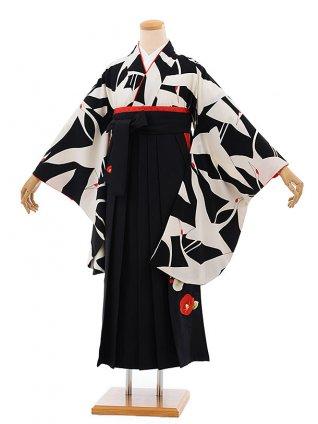 卒業袴h689 黒地に鶴 x 黒 椿 袴