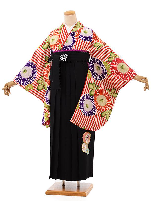 卒業袴レンタル h697 赤白ストライプ花×黒袴