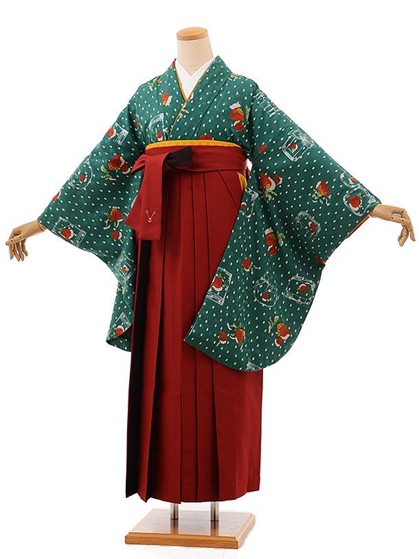 卒業袴レンタル h702 モダンアンテナグリーン苺×赤袴