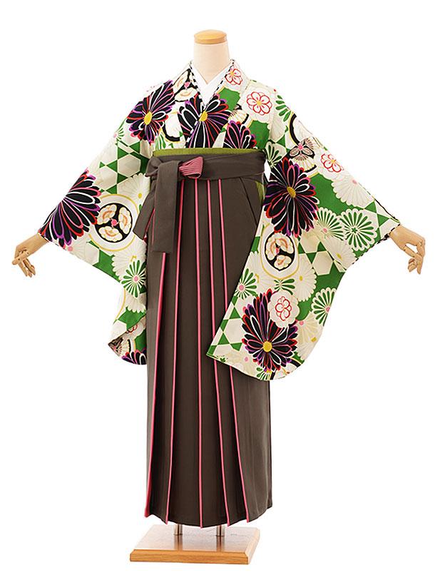 卒業袴レンタル h756 グリーン菊xカーキピンク袴