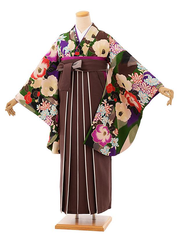 卒業袴レンタル h764 グリーン椿xブラウンアイボリー袴