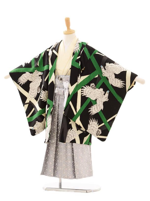 かんたん七五三(3男袴)0295 JAPAN STYLE 鷹/黒緑×ラ