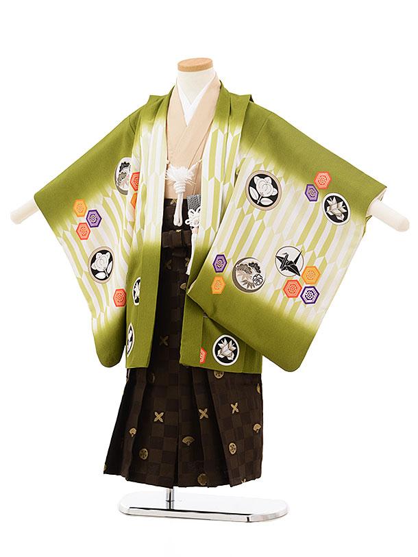 かんたん753レンタル(5歳男の子袴)0552乙葉 抹茶×茶格子柄袴