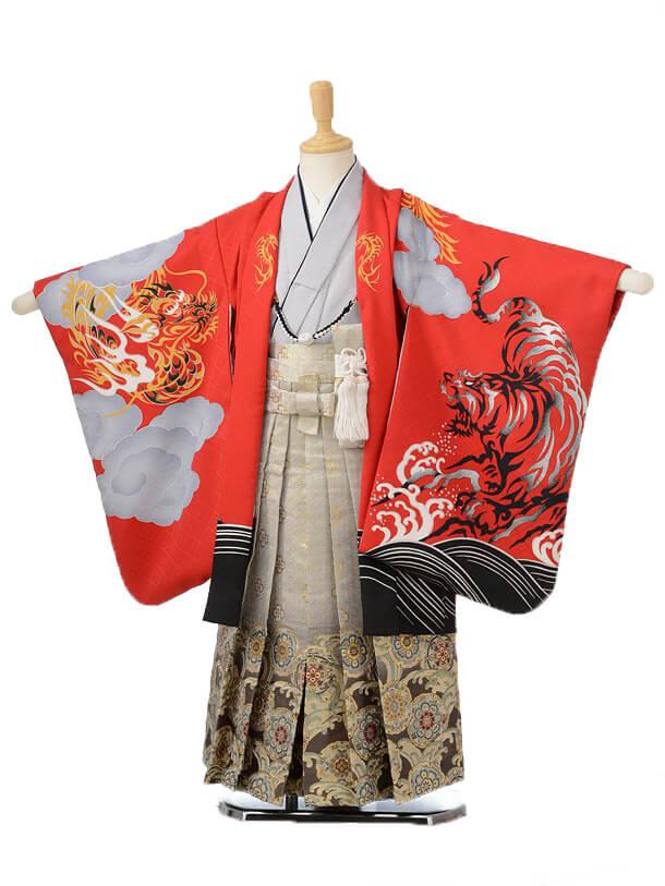 753レンタル(5歳男の子袴)0592花わらべ 赤虎×グレー袴