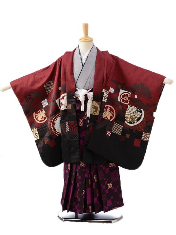 かんたん七五三レンタル(5男袴)0596ワインレッド多柄×パープル袴