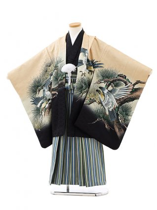 七五三レンタル(7歳男袴)0836薄キャメル色松に鷹xグリーンストライプ袴
