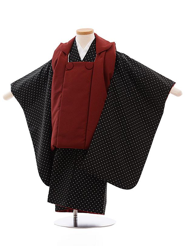 七五三レンタル(3歳男児被布)2346 エンジ色×黒白 ドット