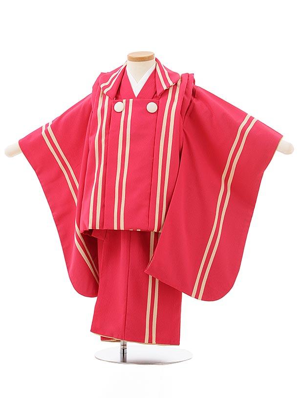 七五三レンタル(3歳男児被布)2517【モダンアンテナ】ツーライン着物
