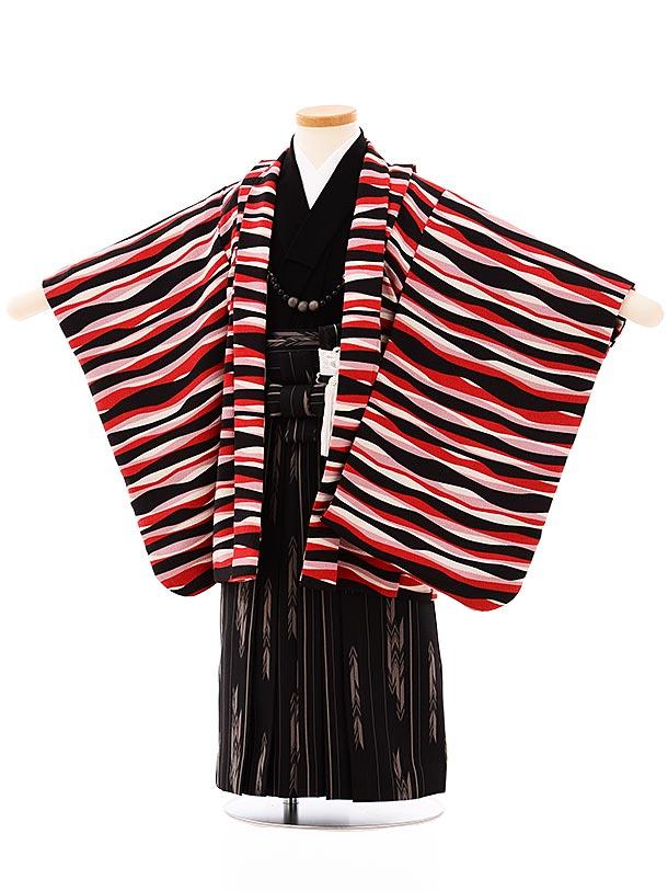 七五三レンタル(3歳,4歳男袴)2660白黒赤変わり縞x黒矢柄袴