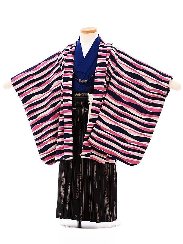 七五三レンタル(3歳,4歳男袴)2661白紺ピンク変わり縞x黒矢柄袴